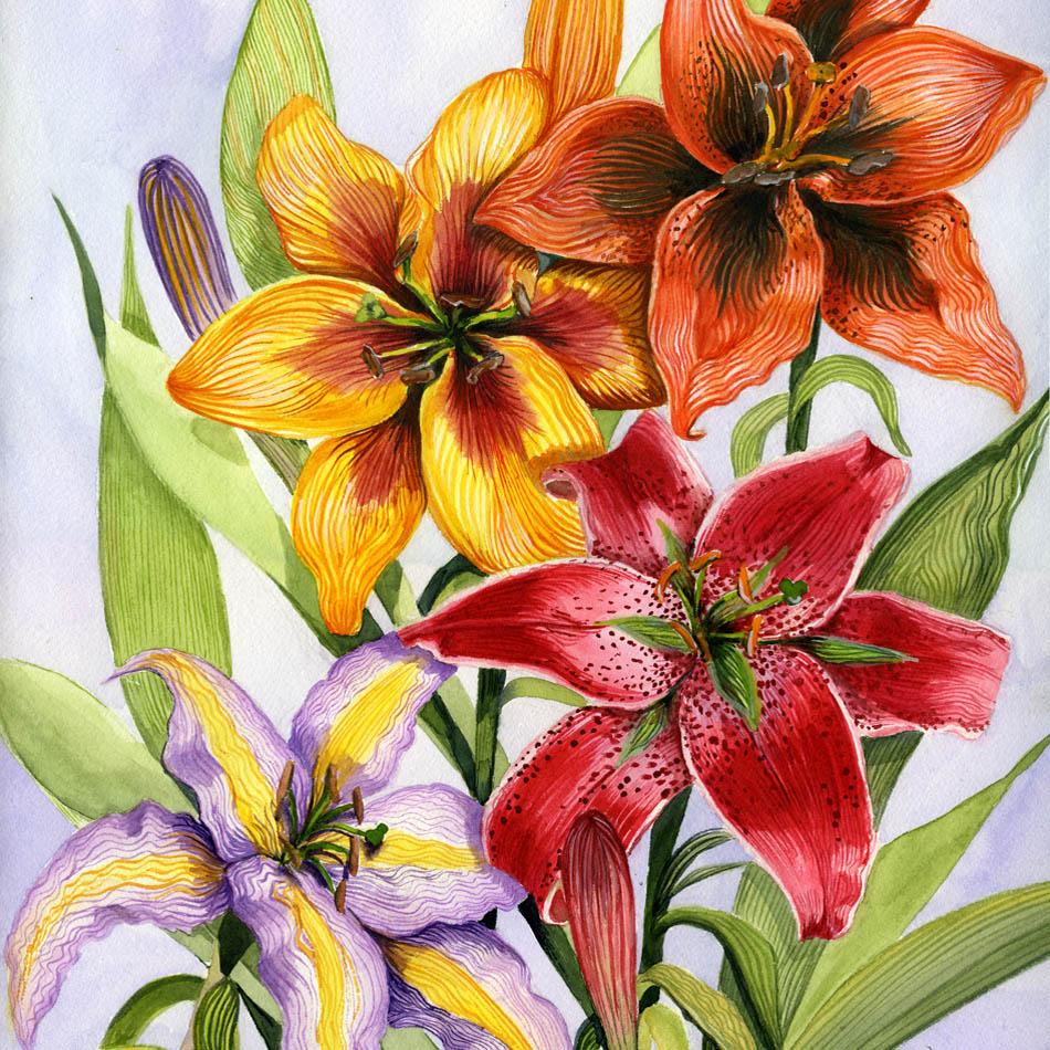 "Original Watercolor - 12"" x 18"" Matted $450 - Please see more of my original work in Fine Art"