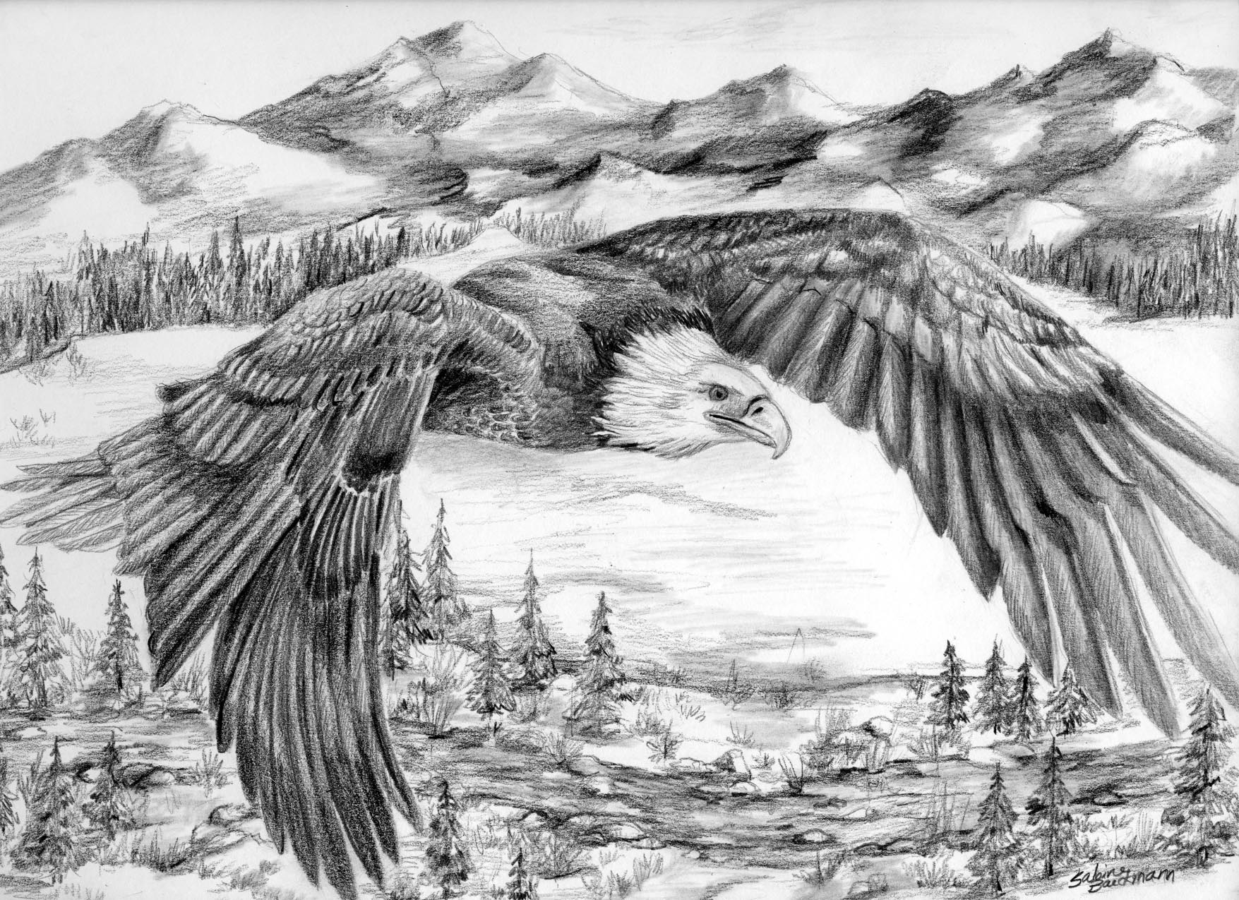 Mountain Glider, Original pencil