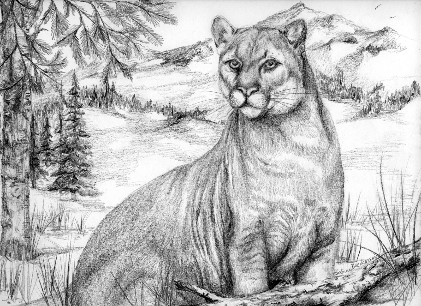 On the Alert, original pencil